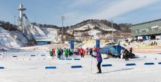 pyeongchang2013_ski-lang_ls_m1p2823_web