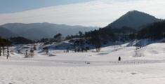pyeongchang2013_ski-lang_ls_m1p3010_web
