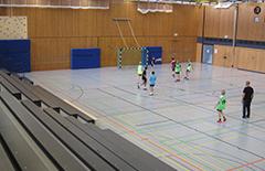 Die Handballwettbewerbe werden im Friedrich-Rückert-Gymnasium ausgetragen.
