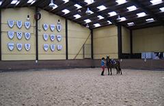 Im Reitpark de Groot werden sich die Reiter und Voltigierer wohl fühlen.